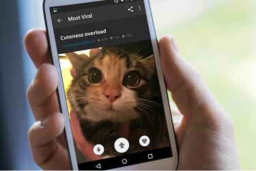 Mobiilirakenduste programmeerimine App Inventoriga Cover Image