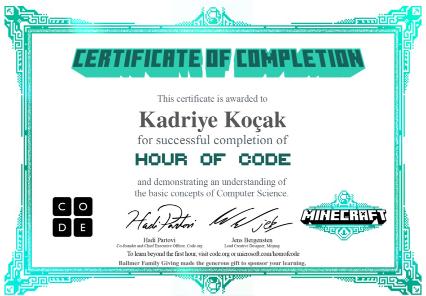 Code Org Image