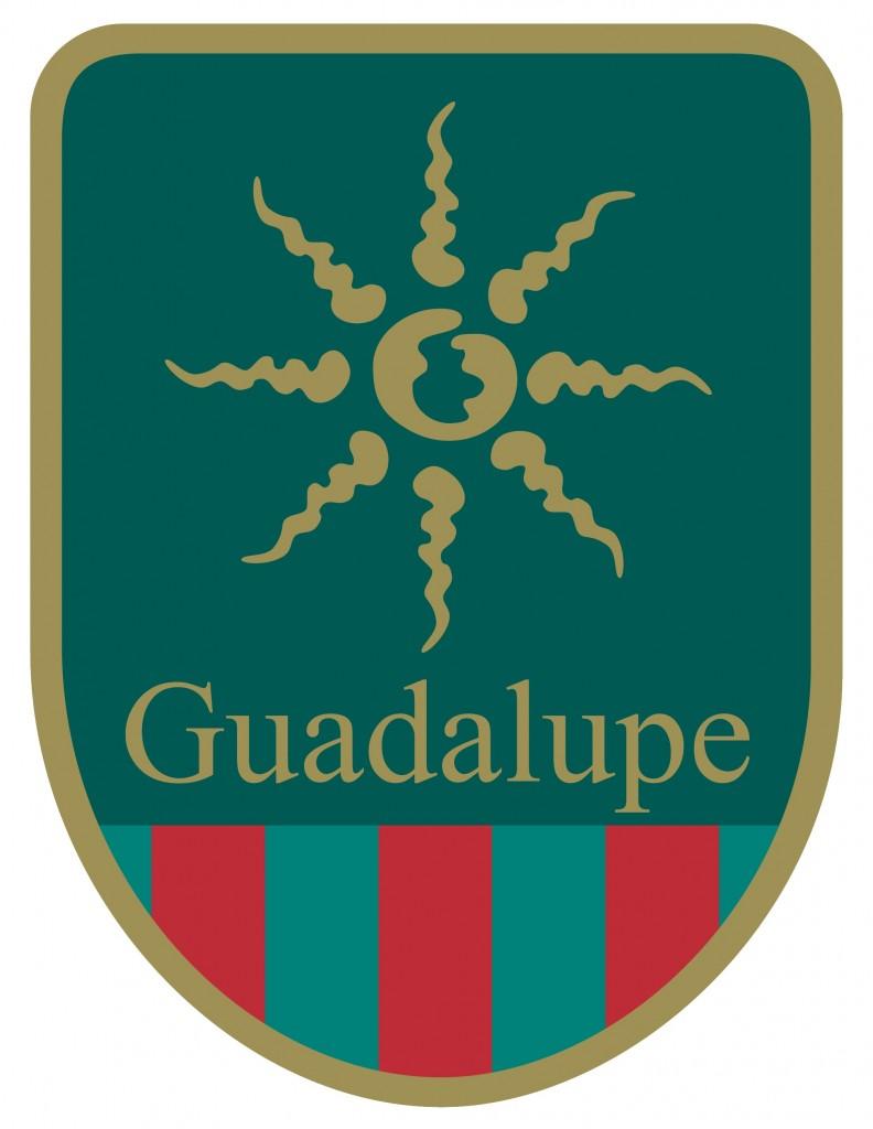 Coding Guadalupe Image