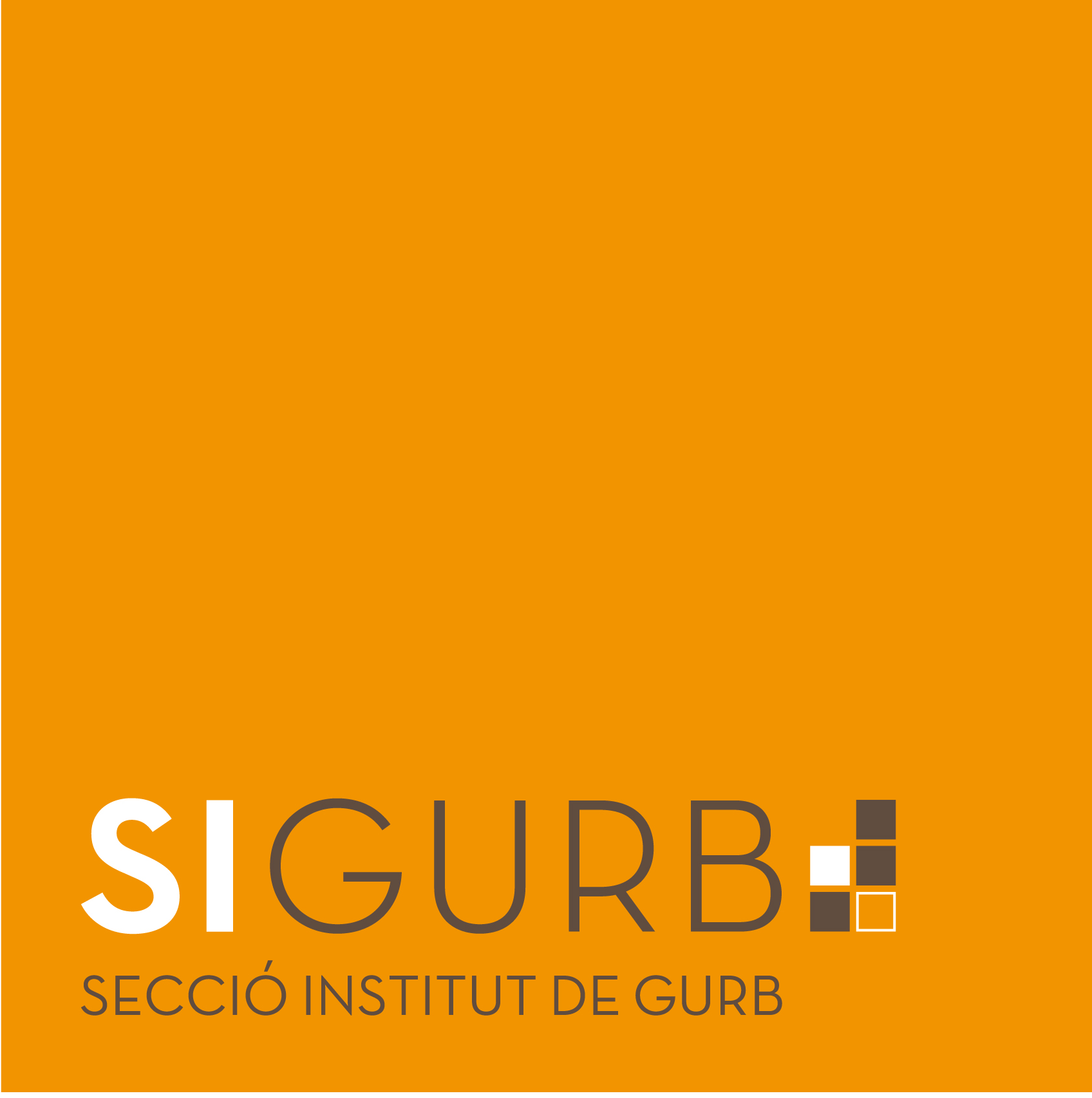 Programació a l'institut de Gurb Image